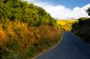 COLOURFUL COUNTRY LANE WALES